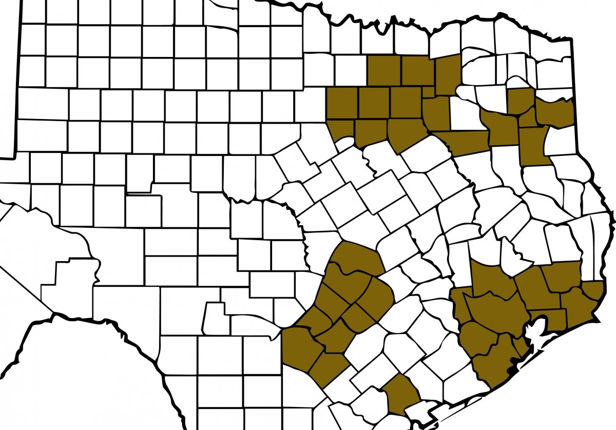 Texas air quality attainment map